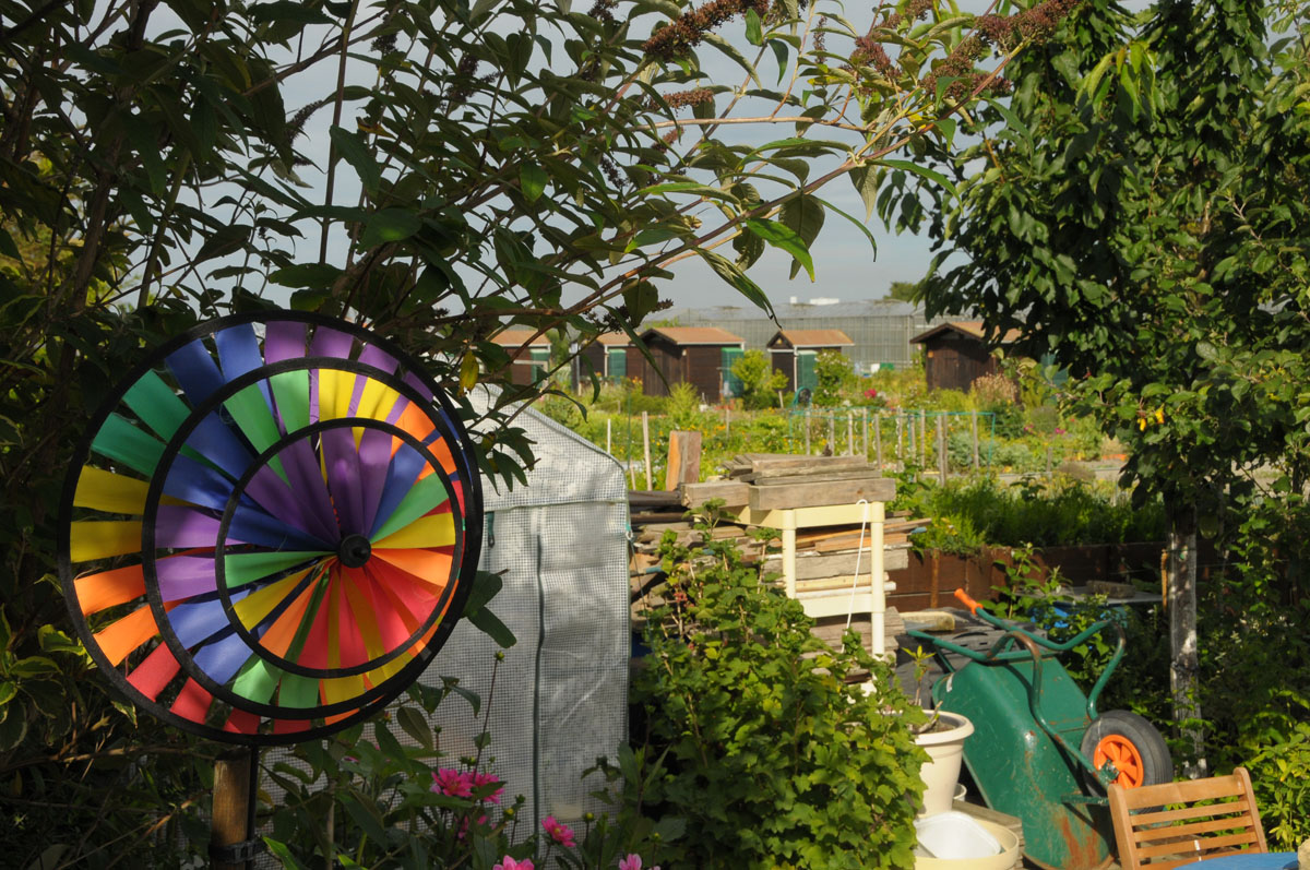 Les rencontres photographiques de dunkerque for Jardin xavier